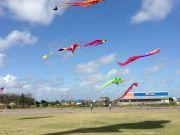 Kitty Hawk Kites, Outer Banks Kite Festival