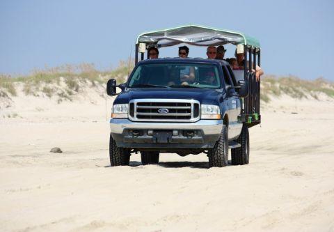 Back Beach Wild Horse Tours Corolla NC, Tour Scenic 4x4 Wild Horse Area