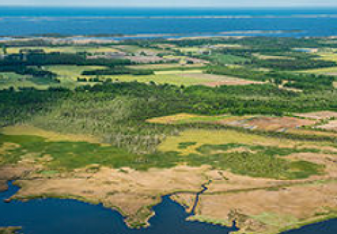 Currituck County Department of Travel & Tourism, Explore a County Park