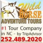 Wild Horse Adventure Tours