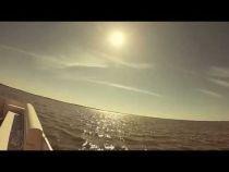 Pontoon Charter Boat